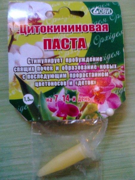 Цитокининовая паста своими руками состав