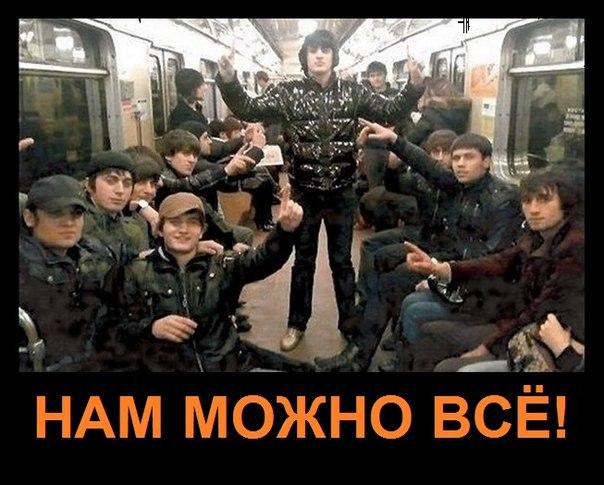 Арестован русский за ликвидацию опасного чеченца в Парголово СПб