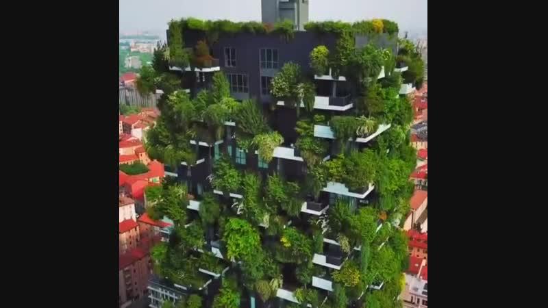 Вертикальный лес в Милане 💚