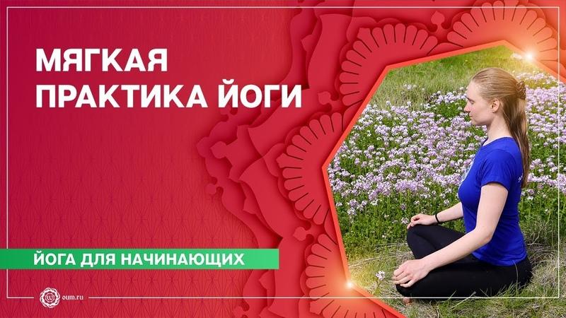 ЙОГА для начинающих Мягкая практика на РАССЛАБЛЕНИЕ и ВЫТЯЖЕНИЕ Марина Лысяк