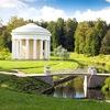 Митинг за сохранение парков Пушкина и Павловска