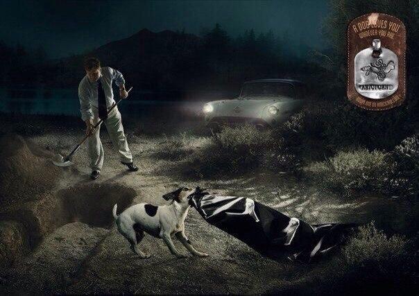 Пoтрясающая реклама приюта для животных.
