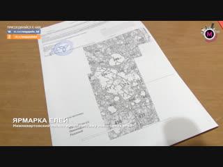 Мегаполис - Ярмарка елей - Нижневартовск