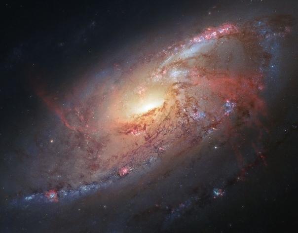 """""""я подозреваю, что вселенная не только страннее , чем мы себе представляем, но и страннее, чем мы можем представить."""" дж."""