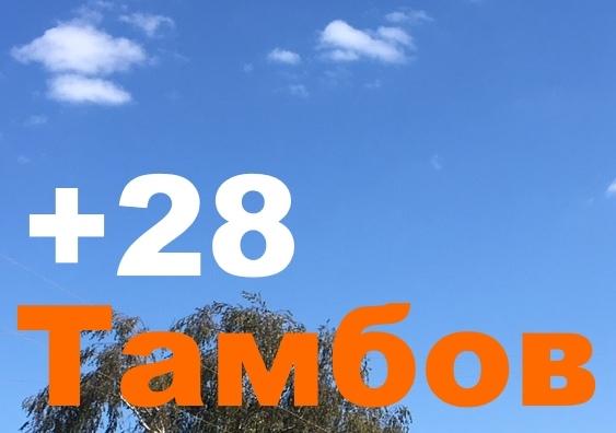 Погода в Тамбовской области остается теплой