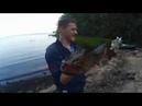 Ловля судака и щуки Разведали новое место Трофейная рыбалка