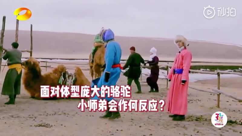 我们的师父 MyBrilliantMasters Live - 怕鹿怕狗怕羊小师弟 董思成 有你不怕的吗 有你战胜了骆驼你今天最棒 我们的师父 芒果TV国际APP 正在直播 Li