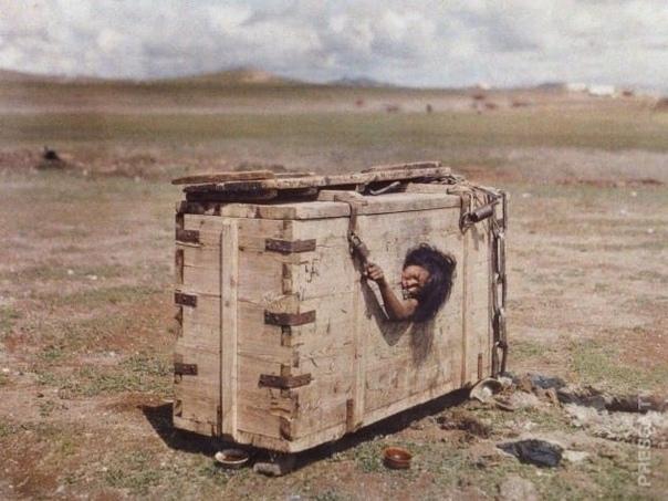 Цивилизация фотографирует варварство Когда в Европе изобрели фотографию, многие народы в остальных частях света пребывали в дремучей дикости. В России, например, человека могли обменять на стаю