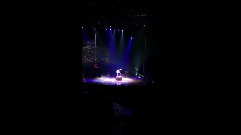 Шоу OVO от Cirque du Soleil » Freewka.com - Смотреть онлайн в хорощем качестве