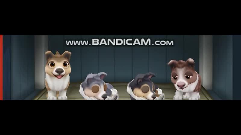 Tre dogs 2018-01-16 12-10-27-111_x264