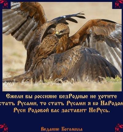 Ирина Гребенщикова, 12 марта , Шагонар, id196807482