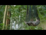 Возвращение на остров Ним (2013) трейлер
