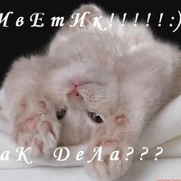 Настя Белова, 2 ноября , Вологда, id160399493