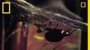 Deadliest Mates Black Widow Spider National Geographic