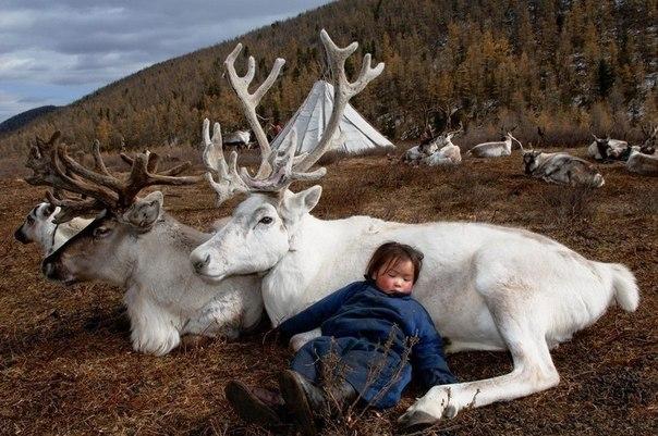 Детство монгольских кочевников