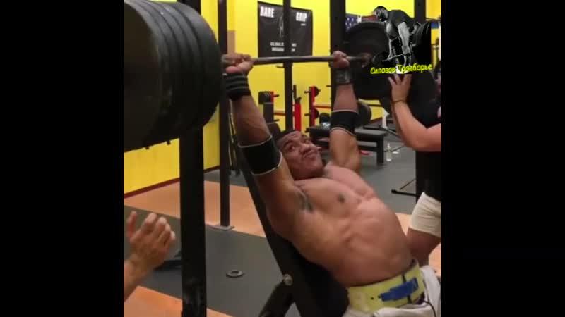 Larry Wheels жим сидя 226 кг
