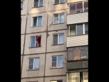 Новосибирцы спасают котика. 30 сентября