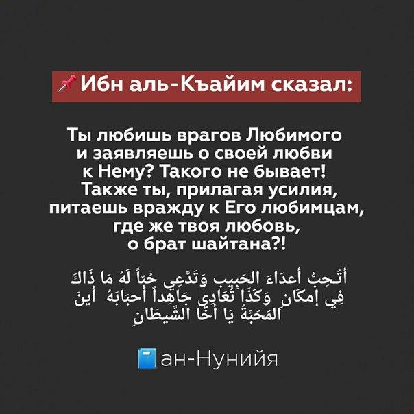 Фото №456243674 со страницы Амира Алханова