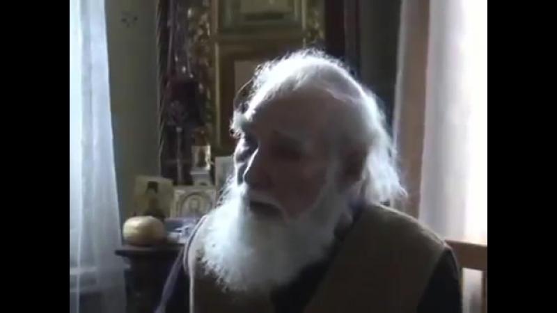 О пситерроре и жидах. Отец Василий Новиков, Отец Николай Ушаков