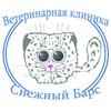 Ветеринарная клиника Снежный Барс, Н. Новгород
