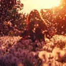— Любимые цветы?