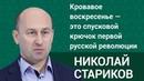 Николай Стариков Кровавое воскресенье это спусковой крючок первой русской революции ФАН ТВ