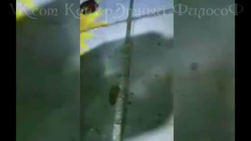 Факир был пьян и фокус не удался)
