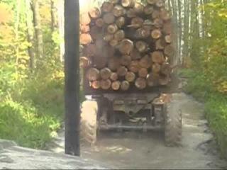 Осень 2013(экстримальный вывоз леса)!