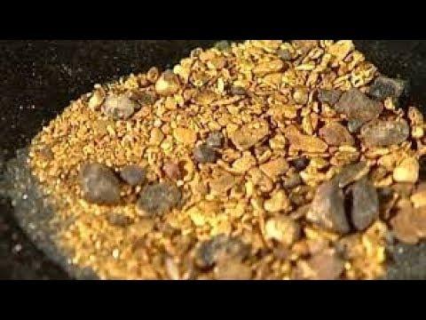 Ouro na flor da terra nova serra pelada em Aripuanã MT😱