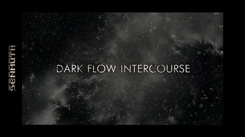 Senmuth • «Dark Flow Intercourse»
