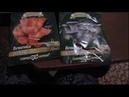Покупка мицелия шампиньоны опята вешенка