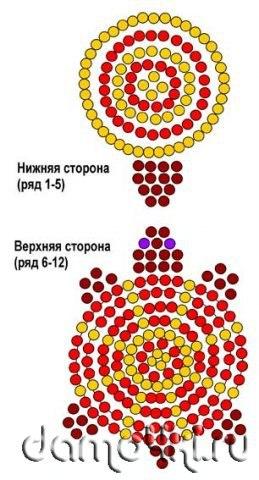 черепах | ВКонтакте