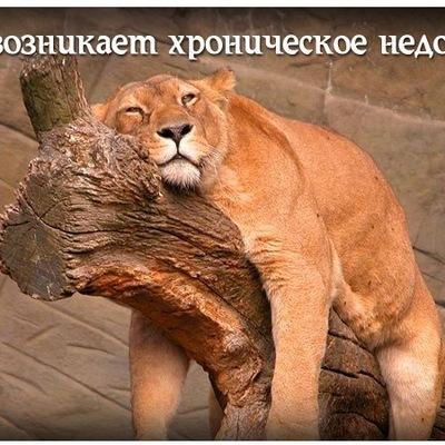 Дмитрий Руденко, 15 апреля 1985, Жлобин, id154822134