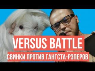 VERSUS BATTLE: СВИНКИ VS ГАНГСТА-РЭПЕРЫ