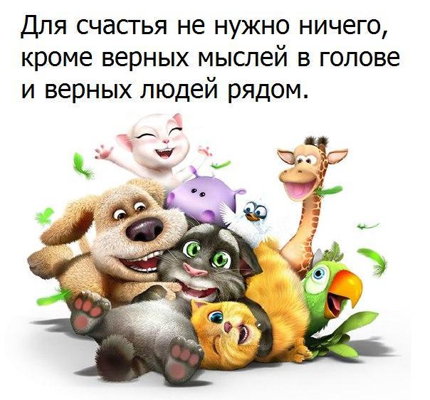 https://cs7063.vk.me/c543106/v543106123/2678d/JuDISL4Z4CI.jpg