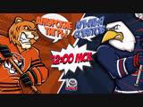 LIVE! «Амурские Тигры» - «Крылья Советов» (16.01 – 12:00)