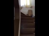 Админ пошел будить подписчиков (VHS Video)