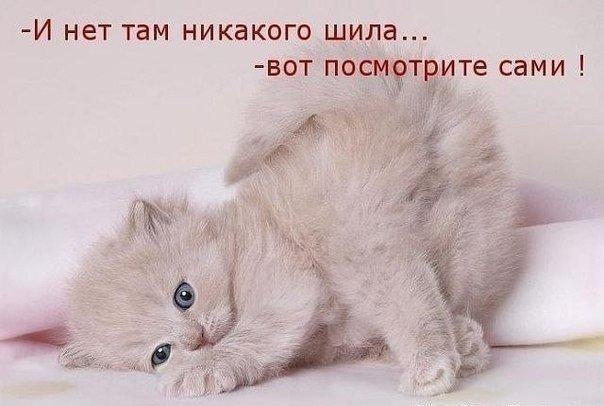 http://cs617330.vk.me/v617330436/f445/T5GmO5e7wLA.jpg