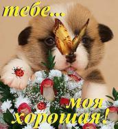 Тебе моя хорошая!))