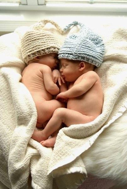 Добрых снов каждому сладенькому носику!