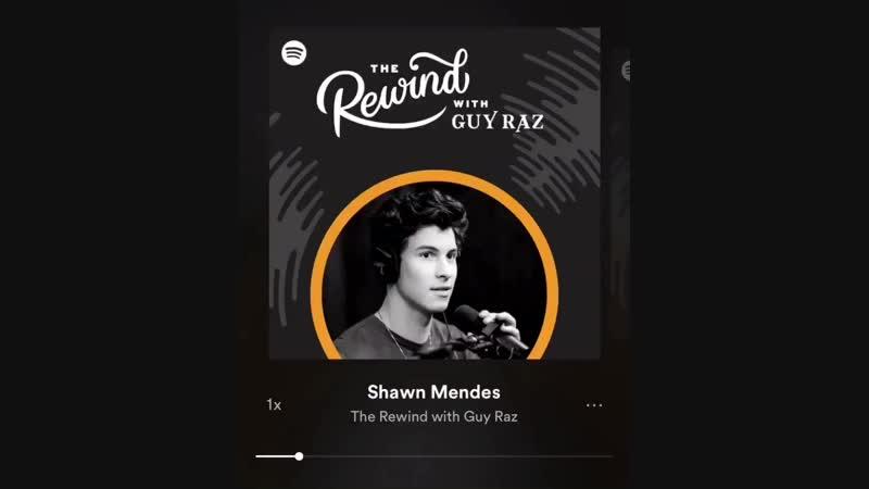 Шон Мендес упомянул Криса в подкасте на Spotify
