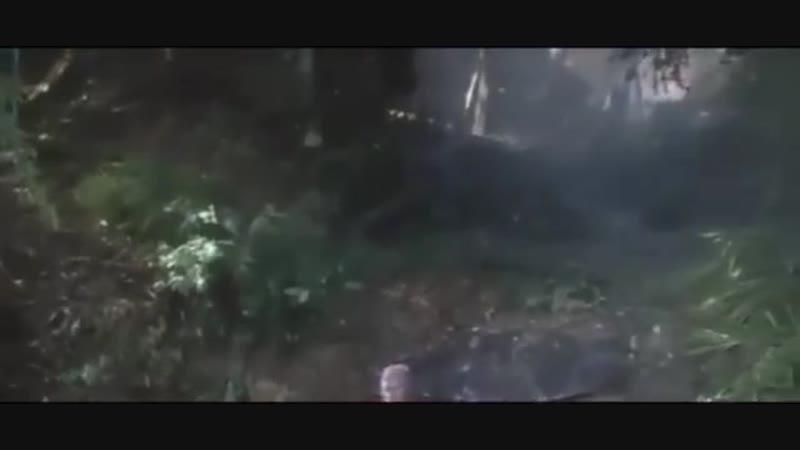 """Робинзон Крузо. Отрывок _""""Таков человек_""""."""