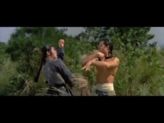 Disciples of Shaolin 洪拳小子(1975) by Shaw Brothers - Heat 03 Revenge of the Master