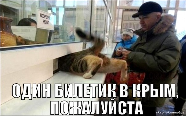 https://pp.vk.me/c614916/v614916856/b030/13xMhpUpwkE.jpg