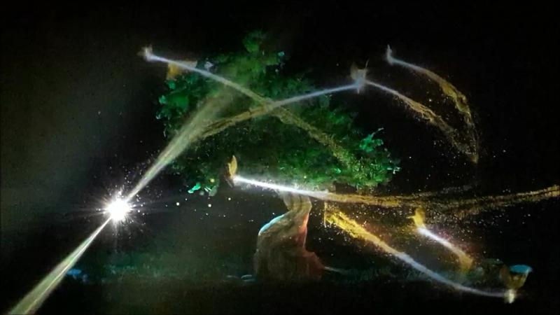 Гном и волшебное дерево