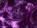 Как использовать вибрации цвета Фиолетовая суббота