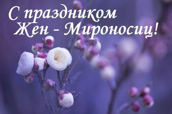 http://cs421226.vk.me/v421226940/5a61/Z2J6op-j3dc.jpg