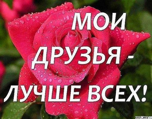 https://pp.vk.me/c312724/v312724319/9b00/EqZH_aRIxr8.jpg