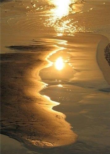 Чтобы открыть новые части света, нужно иметь смелость потерять из виду старые берега.