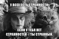 Андрей Герасимов, Новокузнецк - фото №8